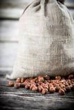Sack of hazelnuts Stock Image