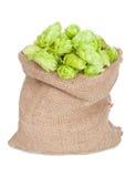 Sack of hops. On white background Stock Image