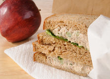 Sack lunch Royalty Free Stock Images