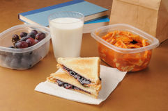 Sack lunch. A healthy sack lunch with a peanut butter sandwich, grapes and ravioli Stock Images