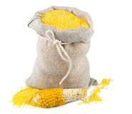 Sack of maize flour. Macro view of maize flour in flax sack with corncob isolated on white background Royalty Free Stock Photo