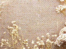 Sack mat with dry flower background and composition made with vintage filter color Royalty Free Stock Photo