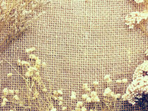 Sack mat with dry flower background and composition made with vintage filter color Royalty Free Stock Image