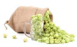 Sack and mug with hop. Stock Photo