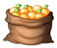 A sack of oranges Royalty Free Stock Images