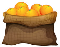 A sack of oranges. Illustration of a sack of oranges on a white background Royalty Free Stock Photos