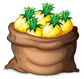 A sack of pineapples Royalty Free Stock Images