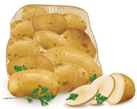 Sack with raw potatoes and parsley leaves Royalty Free Stock Photography