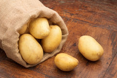 Sack of raw potatoes. On a wooden table Royalty Free Stock Photo
