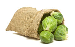 Sack of Sprouts Royalty Free Stock Image