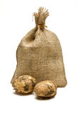 Sack of Spuds. Sack of new Potatoes from low perspective isolated against white background Stock Photos