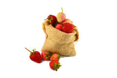 Sack of strawberries Stock Photography