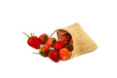 Sack of strawberries Royalty Free Stock Photos