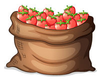 A sack of strawberries Royalty Free Stock Images