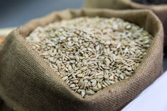 Sack of sunflower seeds Royalty Free Stock Photo
