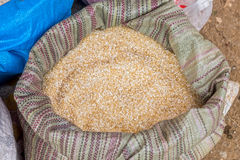 A sack of Thai rice grains in fresh market Royalty Free Stock Photos