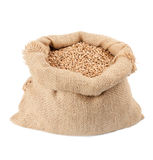 Sack of wheat grains Royalty Free Stock Photo