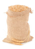 Sack of wheat grains Royalty Free Stock Photography