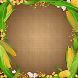 Sackcloth background with the corn foodstuff at the edges. Pattern of sackcloth fabric with gradient shadow and corn foodstuff Royalty Free Stock Photo