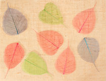 Sackcloth with leaves as decor. Sackcloth with multicolor leaves  decor Royalty Free Stock Photo