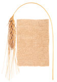 Sackcloth material and ear of wheat Stock Image