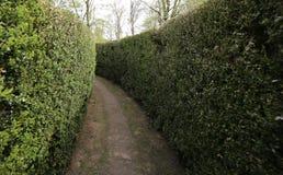 Sackgassestraße in einem verwickelten Labyrinth von Hecken Lizenzfreie Stockbilder
