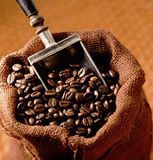 Sacking bag with coffee beans. Brown sacking bag with roasted coffee beans and metallic scoop royalty free stock photo
