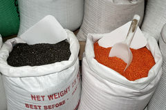 Sacks with black beans and lentils Stock Images