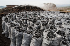 Sacks of charcoal Royalty Free Stock Photos