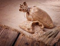 Sacks of grain and wheat ears Stock Photos
