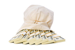 Sacks of money isolated Royalty Free Stock Image