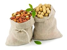 Sacks of peanut with green leaves Royalty Free Stock Photos