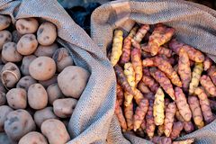 Sacks of Potatoes Royalty Free Stock Image