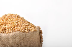 Sacks of wheat grains. On isolated white background Royalty Free Stock Image