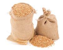 Sacks of wheat grains Royalty Free Stock Photos