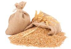 Sacks of wheat grains Stock Photos