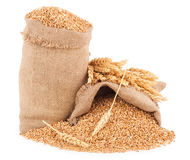 Sacks of wheat grains Royalty Free Stock Image
