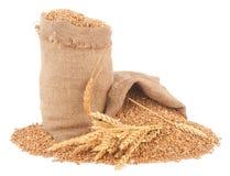 Sacks of wheat grains Stock Photography