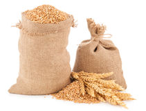Sacks of wheat grains Royalty Free Stock Images