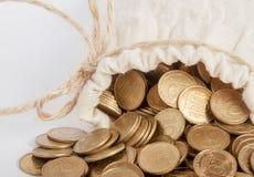 Saco com moedas Fotografia de Stock Royalty Free
