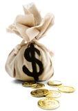 Saco com sinal de dólar Imagem de Stock