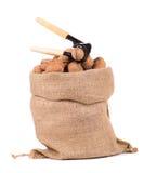 Saco con las nueces y el cascanueces Fotografía de archivo libre de regalías