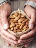 Saco das amêndoas Nuts Imagem de Stock Royalty Free