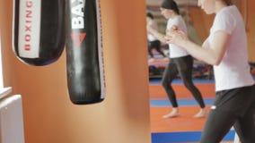 Saco de arena del entrenamiento de la mujer del boxeo en serie apta del kickboxer del cuerpo de la fuerza feroz del estudio de la almacen de metraje de vídeo