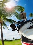 Saco de golfe com os clubes contra a palmeira e o céu Imagem de Stock