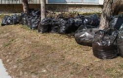 Saco de lixo plástico preto Foto de Stock Royalty Free