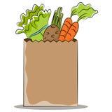 Saco de mantimento com vegetais saudáveis Imagens de Stock