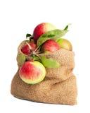 Saco de manzanas imagenes de archivo