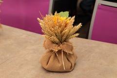 Saco de otoño Foto de archivo libre de regalías