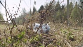 Saco de Trush que encontra-se na floresta video estoque